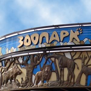 Зоопарки Тупика